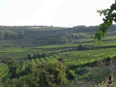Valle di Mezzane, provincia di Verona