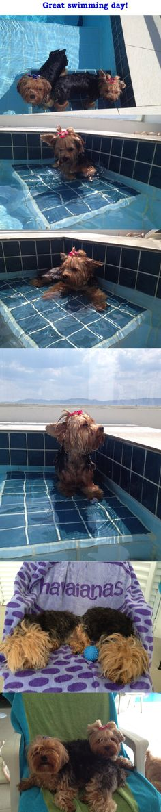 Swimming Day Oh no this bath tub is huge how are we going to escape now !!!!!