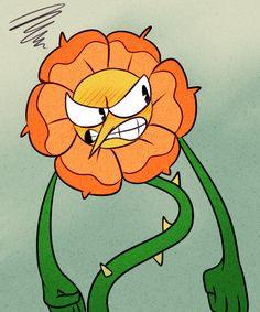 Image result for cagney carnation