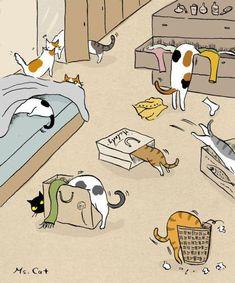 New funny cats illustration draw Ideas Illustration Mignonne, Cute Illustration, Crazy Cat Lady, Crazy Cats, Weird Cats, I Love Cats, Cool Cats, Cat Comics, Photo Chat