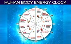 Human Body Energy Clock: Discover The Best Time To Do Everything According The Ancients