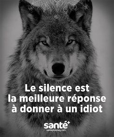 ideas memes truths feelings words for 2019 True Quotes, Great Quotes, Motivational Quotes, Funny Quotes, Inspirational Quotes, Funny Facts, Lone Wolf Quotes, Feelings Words, Warrior Quotes