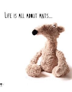 Life is all about ants http://knuffelsalacarteblog.blogspot.nl/