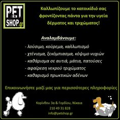 Pet Grooming, Pets, Animals And Pets