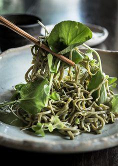 Soba Noodle / Manny Rodriguez 컬러가 예쁜 허브맛 소바
