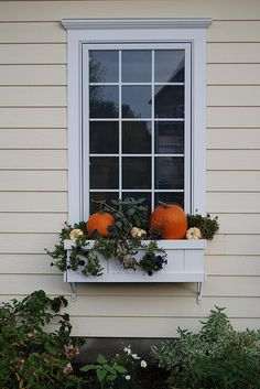 What an effective use of window boxes.  Love.