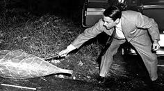 Image result for invasion of the body snatchers 1956