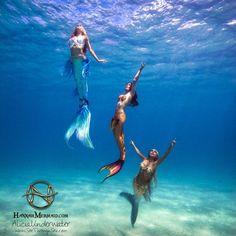 Read Sirenas from the story Imagenes Para Tus Novelas by Cladia_Diaz (Claudia_Diaz) with reads. Fantasy Mermaids, Real Mermaids, Mermaids And Mermen, Magical Creatures, Fantasy Creatures, Sea Creatures, Mermaid Man, Mermaid Cove, Realistic Mermaid Tails