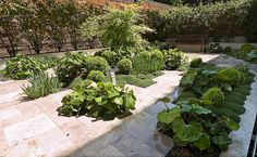 Jardín Urbano 2006