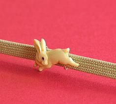 rabbit obidome