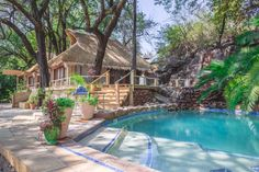 Explore Victoria Falls & Livingstone while you stay at the Tongabezi Lodge. The Tongabezi Lodge offers authentic accommodation, great food & much more. Shuttle Bus Service, Southern Province, All Flights, Time To Leave, River Cottage, Livingstone, Victoria Falls, Great View, Hotel Reviews