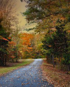 Rekindled Spirit - Autumn Landscape Scene