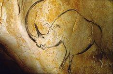 How to See the Prehistoric Art of Chauvet Cave Chauvet Cave, Lascaux Cave Paintings, Art Pariétal, Prehistoric Age, Cave Drawings, Art Roman, Stone Age, Art Sites, Paintings