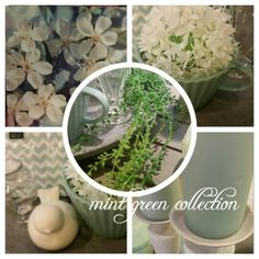 Mint green collection