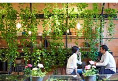 花とグリーンのある時間。植物のありのままを活かした景観 | iemo[イエモ] | リフォーム&インテリアまとめ情報