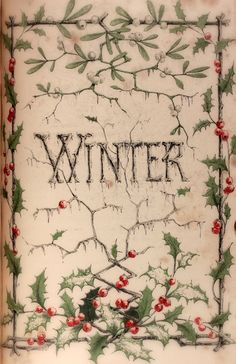 Winter | 19th century colour printed illustration | Holly berries, snow dusted leaves leaves and mistletoe.