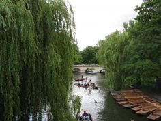Step by Step Things to Do During June in London #London #stepbystep