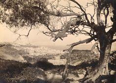 Antonio Cavilla Photographer: Vista de Tánger desde el monte.