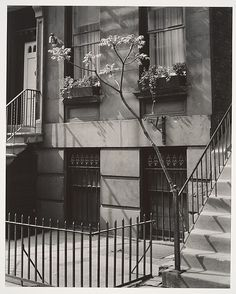 Titled Brownstone in the Fifties, Taken by Brett Weston, son of Edward Weston, circa 1947, The Elisha Whittelsey Collection.