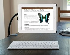 """The adjustable arm lets your position your iPad however you like, all while preserving the """"floating iPad"""" look."""