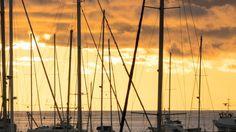 Sunset Behind The Yachts At Marina In Bar City, Montenegro #Bar, #Biggunsband, #Dock, #Harbor, #Holiday, #Lapse, #Luxury, #Marina, #Montenegro, #Ocean, #Sea, #Summer, #Time, #Vacation, #Water, #Yacht http://goo.gl/kFSTBp