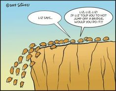Lemmings headed off a cliff