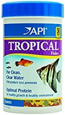 Tropical fish for sale | Aquarium Accessories - How Can We Help You?