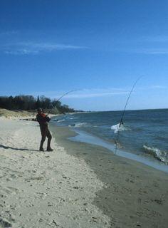 Surf fishing (1)