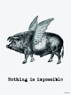 "We absolutely love the Vanilla Fly brand and the vintage inspired mix of quirkiness this company has to offer. Vanilla Fly pride themselves on creating beautiful and high quality products with an edge. This Vanilla Fly poster features a flying pig with the words ""nothing is impossible"" printed onto a cream background."