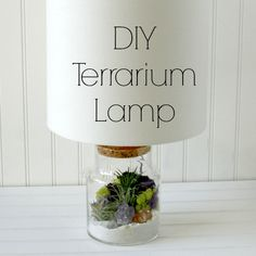 DIY Terrarium Lamp. I've seen a few hollow glass lamps in stores and have beeen dying to make a terrarium lamp #UOonCampus #UOContest