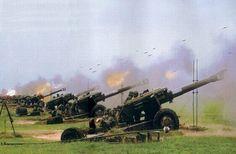 artiglieria cinese ...