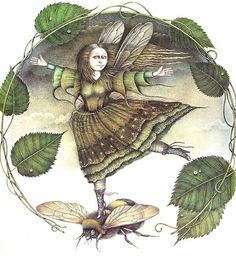 """Mint tiptoed on the bee's velvet shoulders.""    Christopher Logue, The Magic Circus, illus. Wayne Anderson"