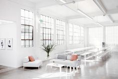 everlane sets headquarters in light-filled former laundry facility in san francisco