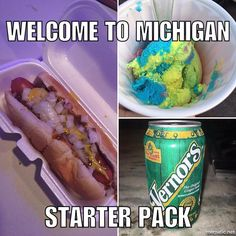 No matter how far you stray from Michigan, you'll always long for Vernors when your stomach starts to churn. It's a proven fact! Michigan Facts, Map Of Michigan, Detroit Michigan, Michigan Travel, Most Hilarious Memes, Funny Memes, Jokes, Coney Dog, Detroit History