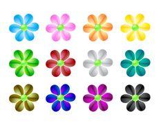 petals  together