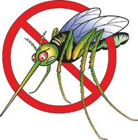 Natural mosquito repelling plants -- basil, lemongrass, citronella plant/grass, rosemary, catnip, marigolds, garlic, tansies (mums).  Try pots, hanging baskets, planters -- spread them around the patio!