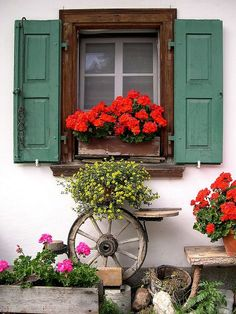 Window Boxes Ideas For Sun. Window boxes can be made from metals, wood or perhaps from solid vinyl or PVC types materials. Each of these has its own distinct features that could create a whole new ambiance to the place where it is being set up. Red Geraniums, Porche, Garden Windows, Cottage Windows, Rustic Gardens, Through The Window, Window View, Window Dressings, Window Boxes