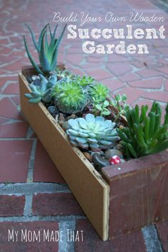 Love succulents?  Make your own wooden succulent garden from pieces of spare and scrap wood.  You could add details to make it a fairy garden.  DIY Succulent Garden by My Mom Made That