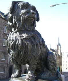 Man's best friend -  Pictured is the famous statue in Edinburgh, Scotland, of Greyfriars Bobby, a terrier who guarded the grave of his owner for 14 years