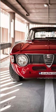 Vintage Sports Cars, Classic Sports Cars, Vintage Cars, Classic Cars, Alfa Cars, Alfa Romeo Cars, Modified Cars, Amazing Cars, Sport Cars
