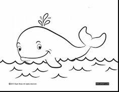 73 Mejores Imágenes De Ballenas En 2019 Whales Whale Y Marine Life