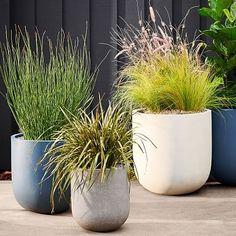 Radius Planters Balcony Planters, Modern Planters, Indoor Planters, Ceramic Planters, Garden Planters, Garden Beds, Recycled Planters, Concrete Planters, Plants Indoor