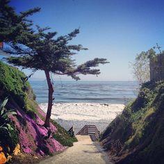 Santa Barbara's stairways to ocean paradise!