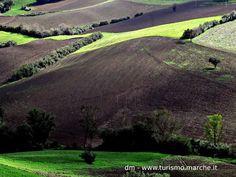 Landscape near Pesaro, Marche, Italy.
