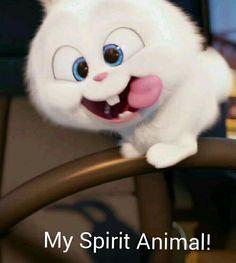 : My spirit animal Foto Cartoon, Cartoon Pics, Disney Phone Wallpaper, Wallpaper Iphone Cute, Snowball Rabbit, Cute Bunny Cartoon, Rabbit Wallpaper, Secret Life Of Pets, Cute Cartoon Wallpapers