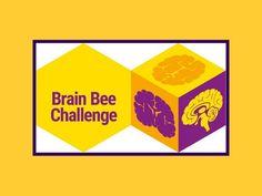 دورهی آمادگی مسابقه دانش مغز برین بی (دوره ششم)