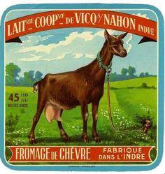 Fromage de Chèvre fabriqué dans l'Indre Vintage Labels, Vintage Ephemera, French Vintage, Retro Vintage, French Cheese, Goats, Decoupage, Moose Art, Cheese Lover