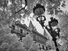 Spain is exciting and numerous, embrace your inner happen nerd at El Prado in The city, walk the active boardwalk along the Med in Barcelona . Barcelona Street, Barcelona Spain, Infrared Photography, White Photography, Creative Flyer Design, Street Lamp, Spain Travel, Fine Art America, The Good Place