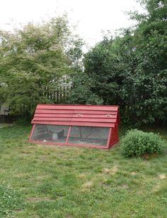 Back yard Chicken coop!