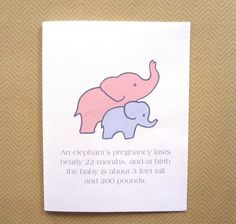 Funny Baby Congratulations Card, Funny Baby Shower Card For Expectant  Mother, Card For New Mom, Elephant Card